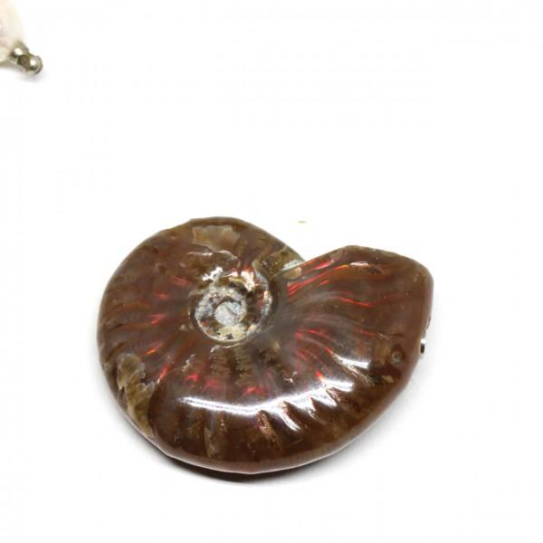 Wechselschließe Ammonit opalisierend